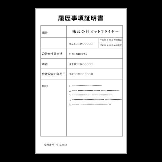 ビットフライヤー 登記事項証明書